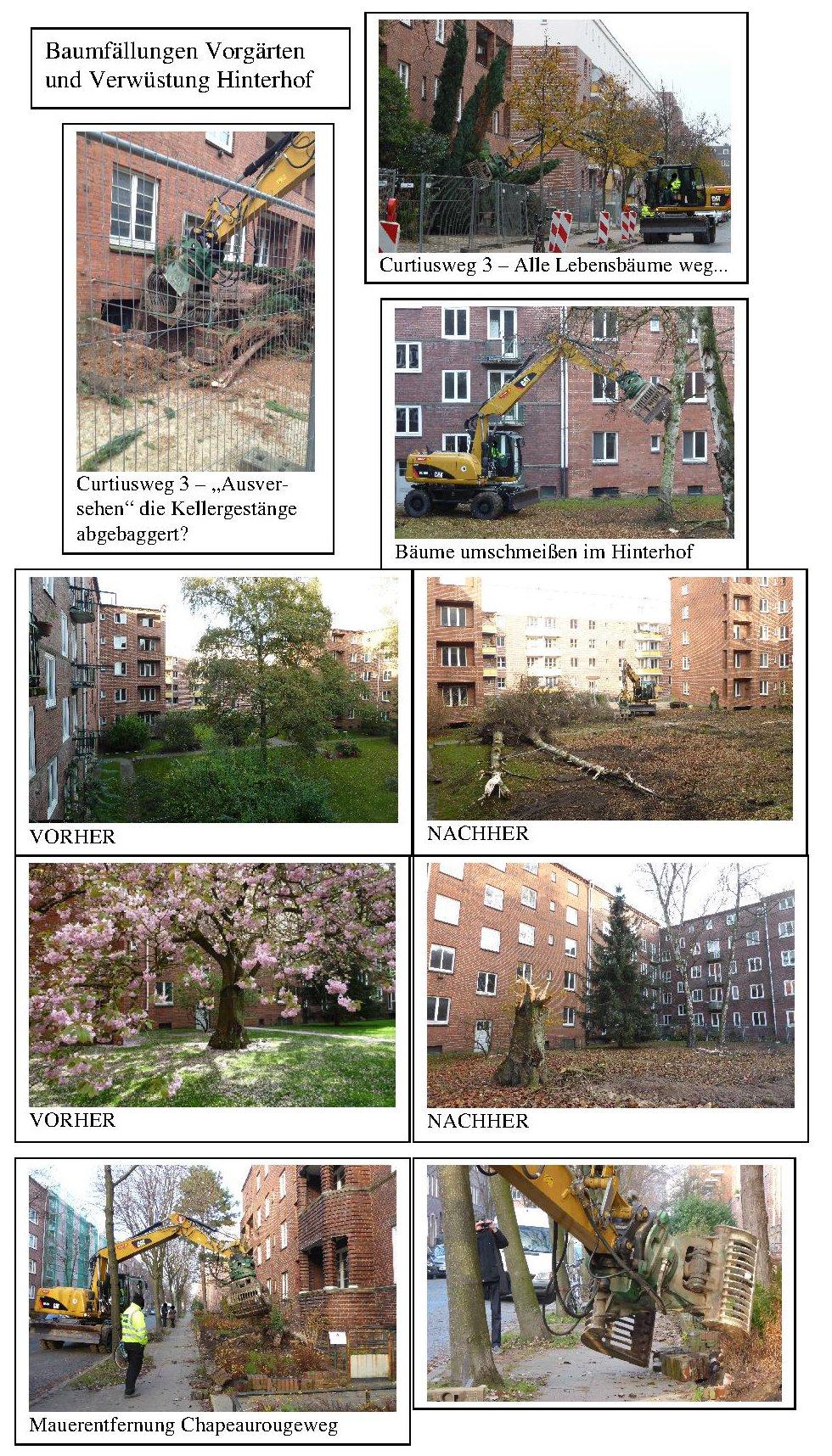 Foto Doku Baggerbäumemauern 1.12.14 kl